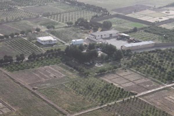 Afghanistan progetto a sostegno dell'agricoltura locale
