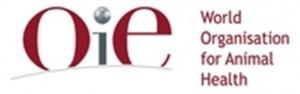 OIE+Logo