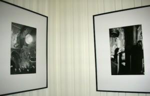 Foto della mostra Kovilj