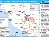 Ebola é fuori controllo in Guinea