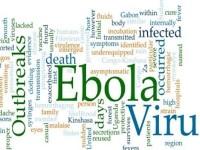 Ebola: aggiornamento dei Ministeri della Salute e degli Esteri