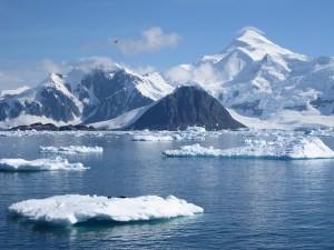 Artico e Antartico
