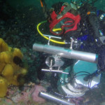 I fondali dell'Antartide sono un mondo che non ti aspetti: intervista ai palombari della Marina Militare